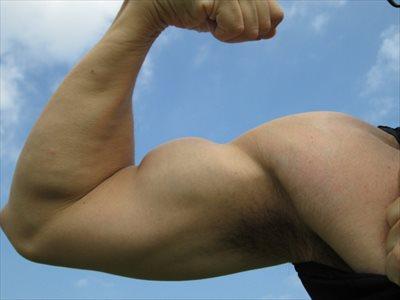ストレッチで筋肉の質を上げる